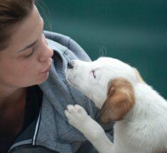 Pas – lijek za sve